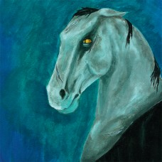 Procosmian Fannyfiddlers - The Horse From Hell (CD - 2008)